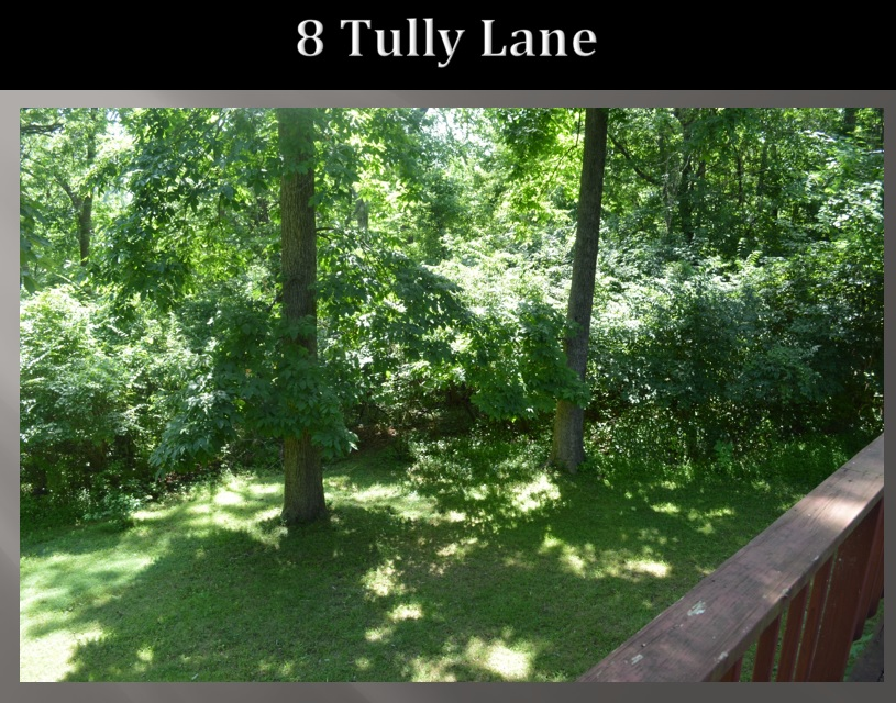 tully lane 2.jpg